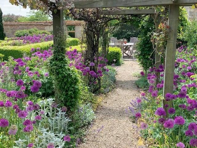 Lizzie and David Banister's garden