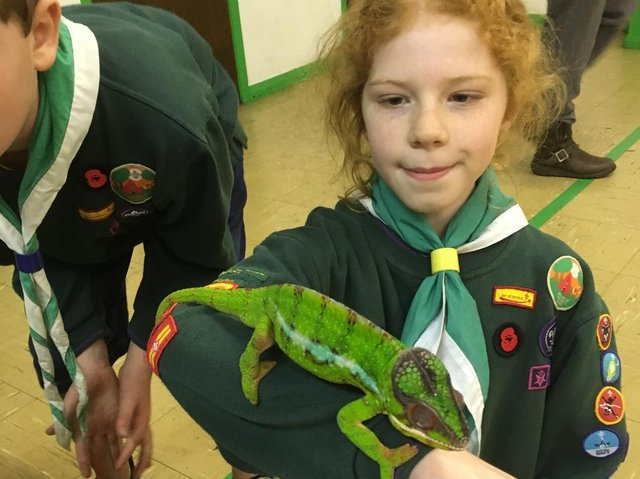 A local scout meets an unusual friend