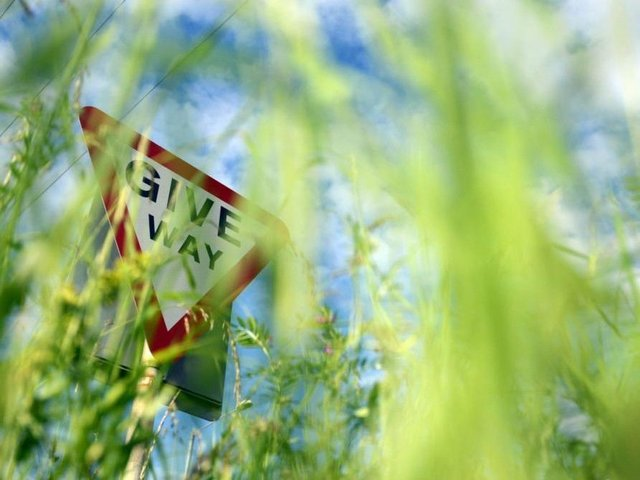 The council says it is prioritising dealing with grass verges in the county